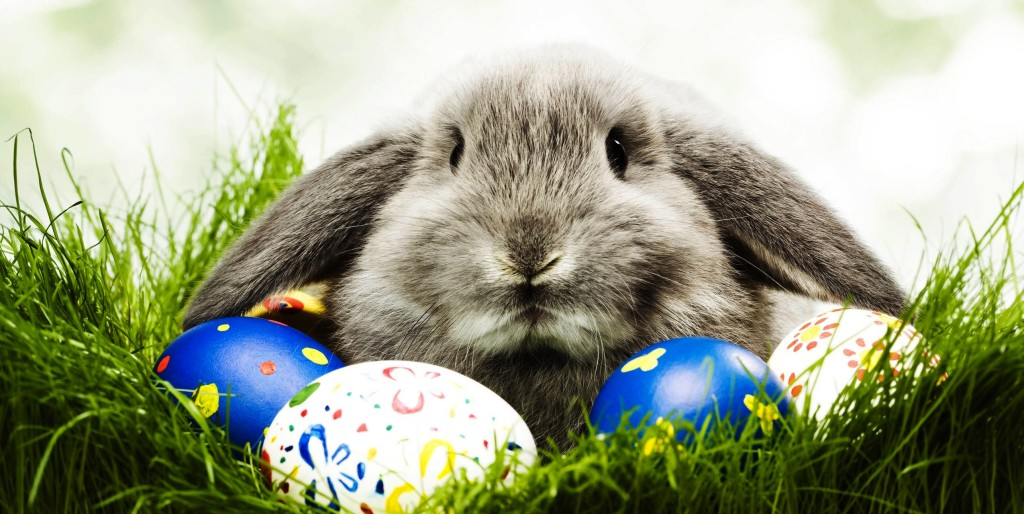 3 ways to make your Easter Event livelier this year