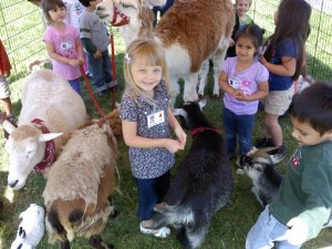 kids-party-planner-orange-county-petting-zoo